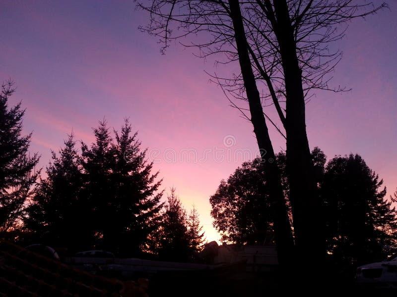 Crepúsculo da costa oeste fotos de stock
