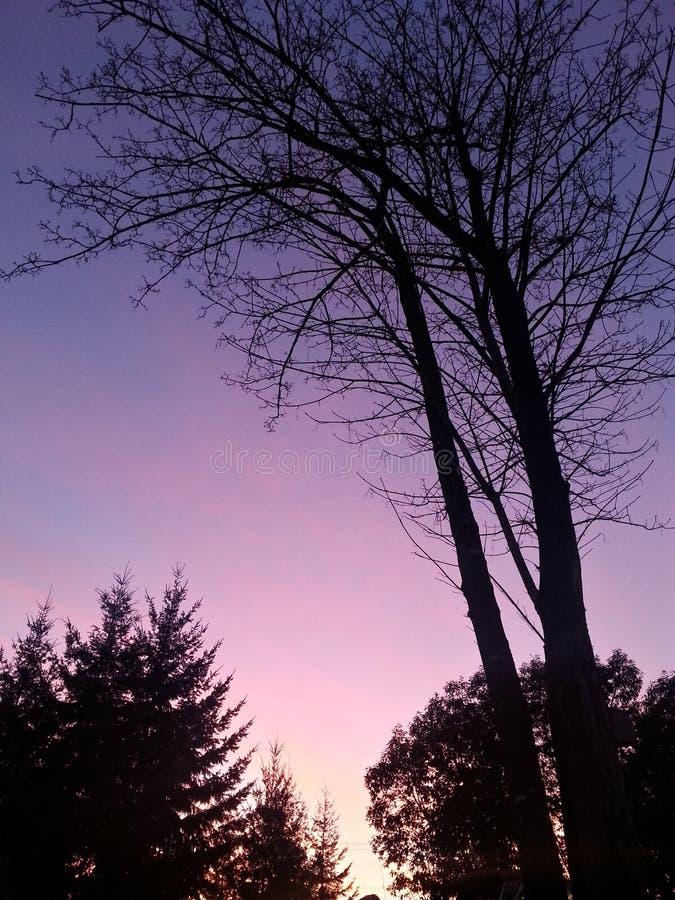 Crepúsculo da costa oeste imagens de stock