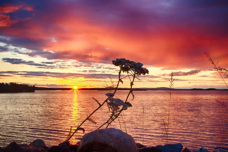 Crepúsculo em Finlandia fotos de stock