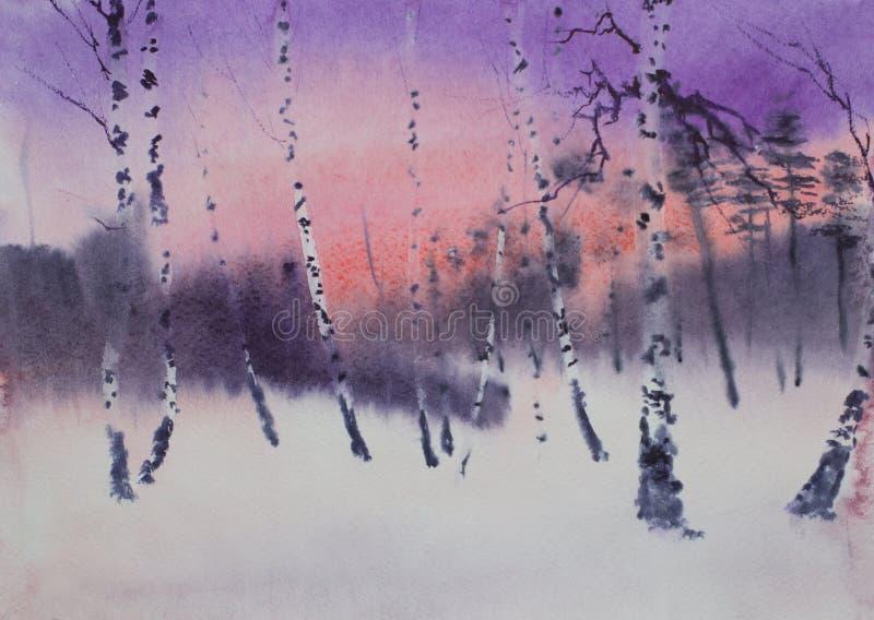 Crepúsculo escuro em um bosque do vidoeiro do inverno ilustração stock