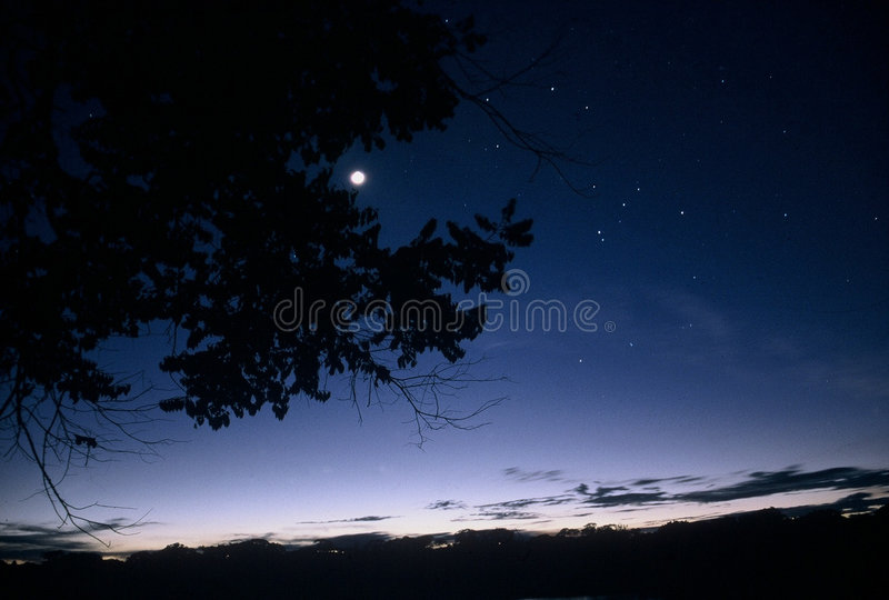 Crepúsculo na bacia de Amazon imagem de stock royalty free