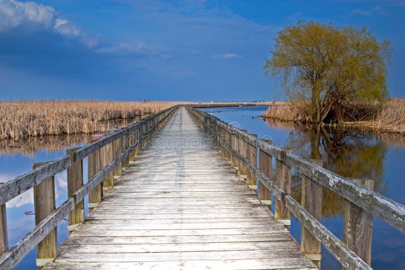 Crepúsculo no passeio à beira mar do pântano no ponto Pelee fotos de stock royalty free