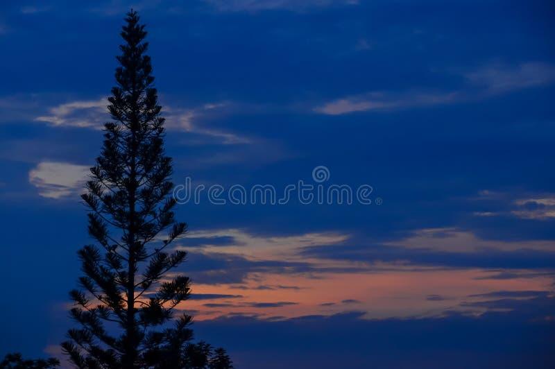 Crepúsculo no trópico de Equador imagens de stock