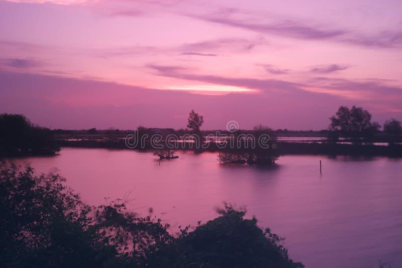 Crepúsculo púrpura y rosa sobre el lago fotografía de archivo libre de regalías