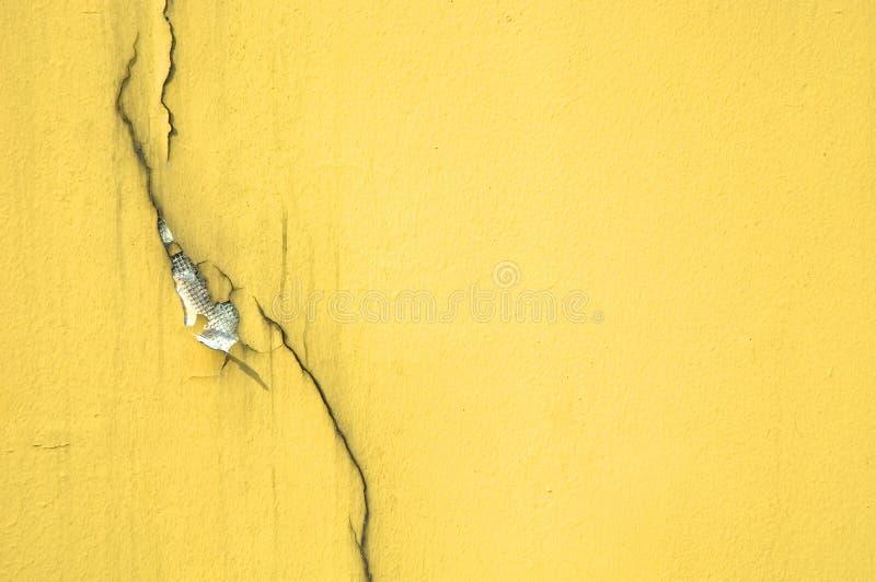 Crepa sulla parete gialla immagini stock libere da diritti