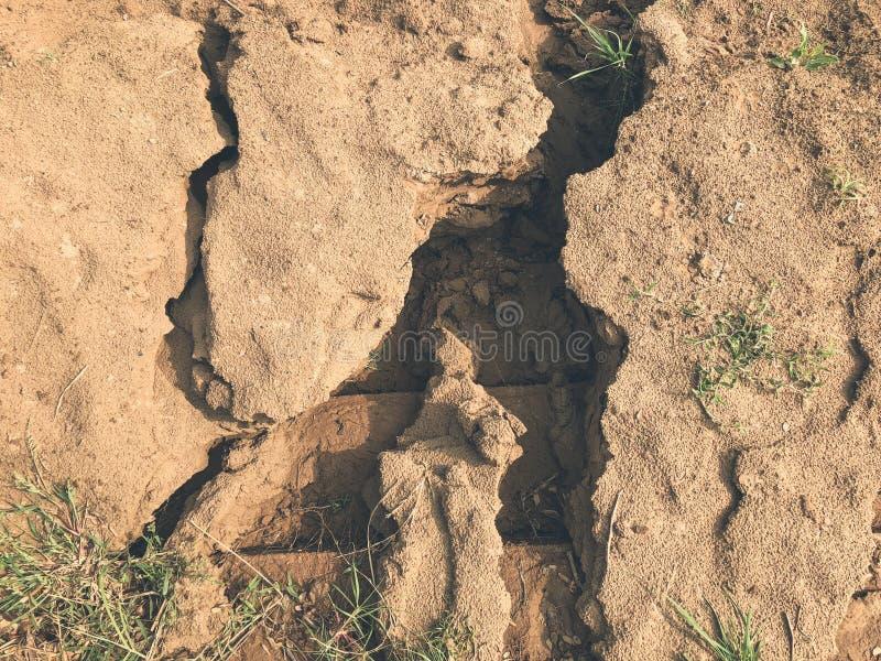Crepe del suolo asciutto nella terra fotografia stock libera da diritti
