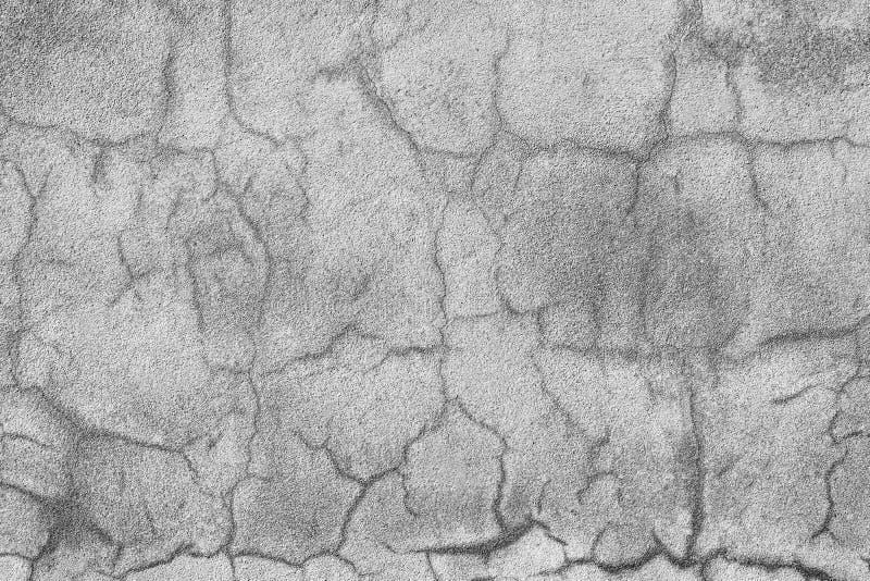 Crepe della parete del cemento fotografie stock libere da diritti