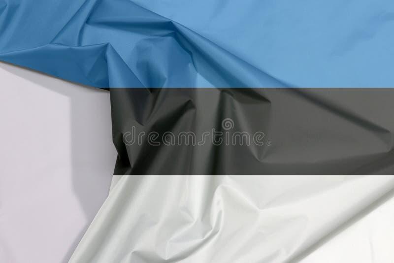 Crepe e vinco da bandeira da tela de Estônia com espaço branco foto de stock royalty free