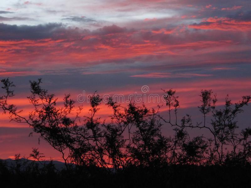 Crepuscolo in Clark County Wetlands Park, Las Vegas, Nevada immagine stock libera da diritti