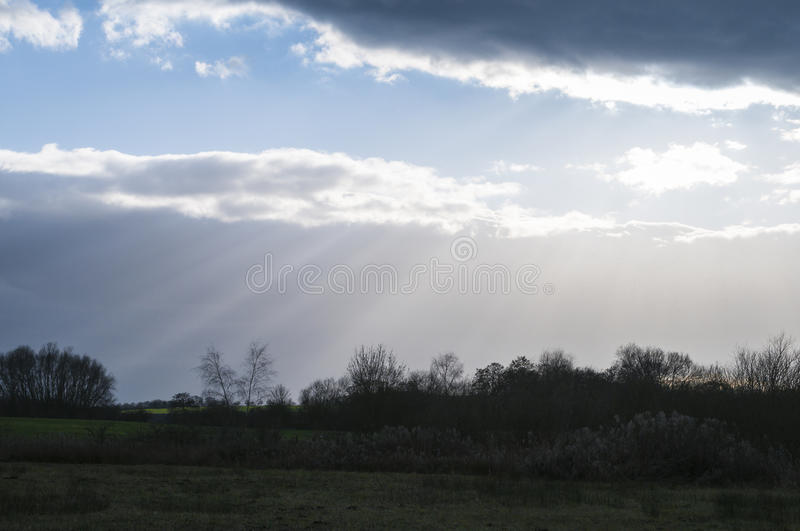 Crepuscular rays and treetops. Crepuscular rays shining through the clouds above woodland in Yorkshire,England stock image