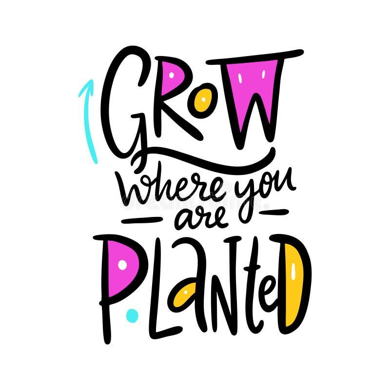 Cresça onde você é plantado Rotulação tirada mão da frase do vetor ilustração do vetor