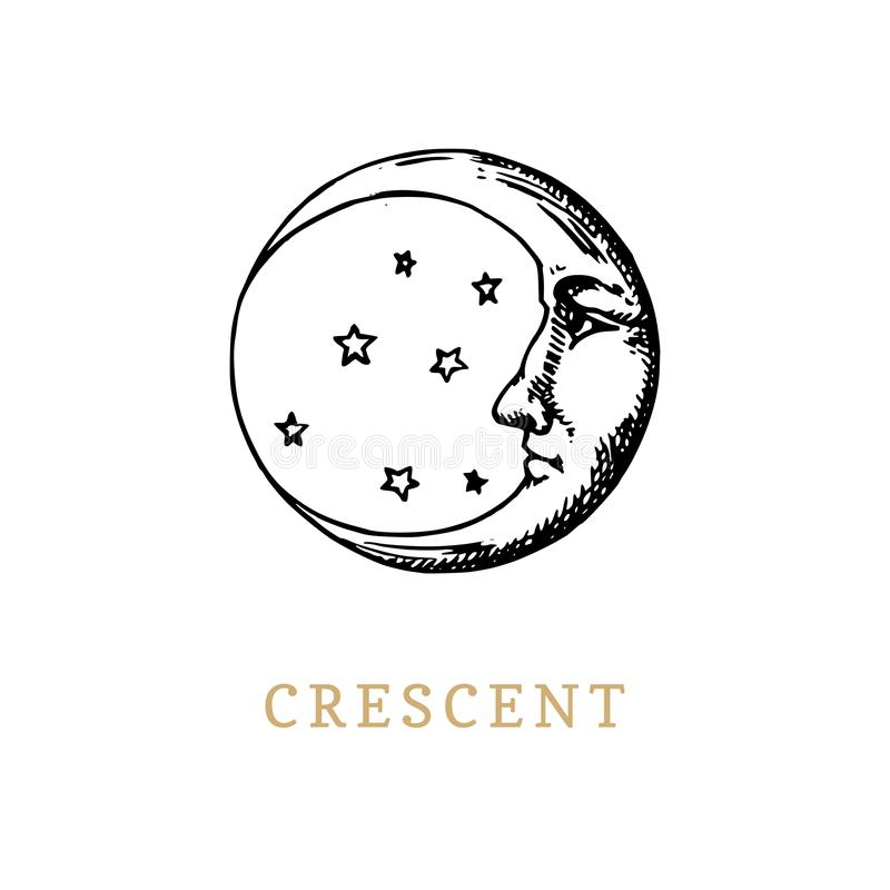 The crescent, hand drawn in engraving style. Vector graphic retro illustration. The crescent, hand drawn in engraving style. Vector graphic retro illustration vector illustration