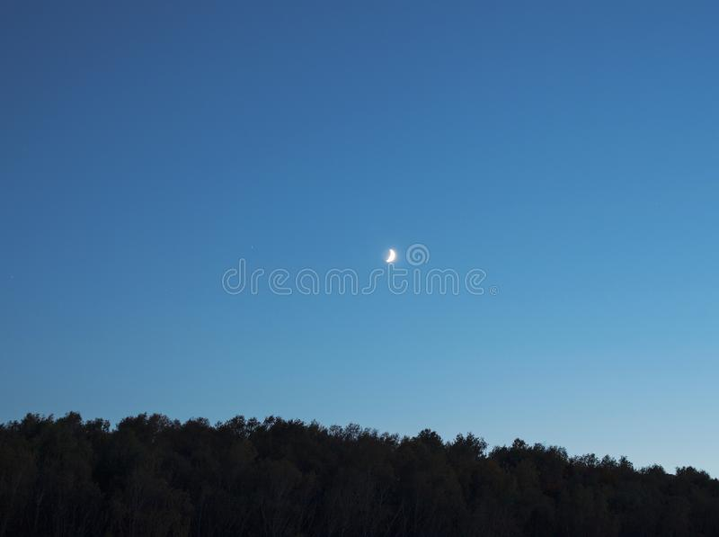 Crescent moon in night sky over dark forest silhouette stock images