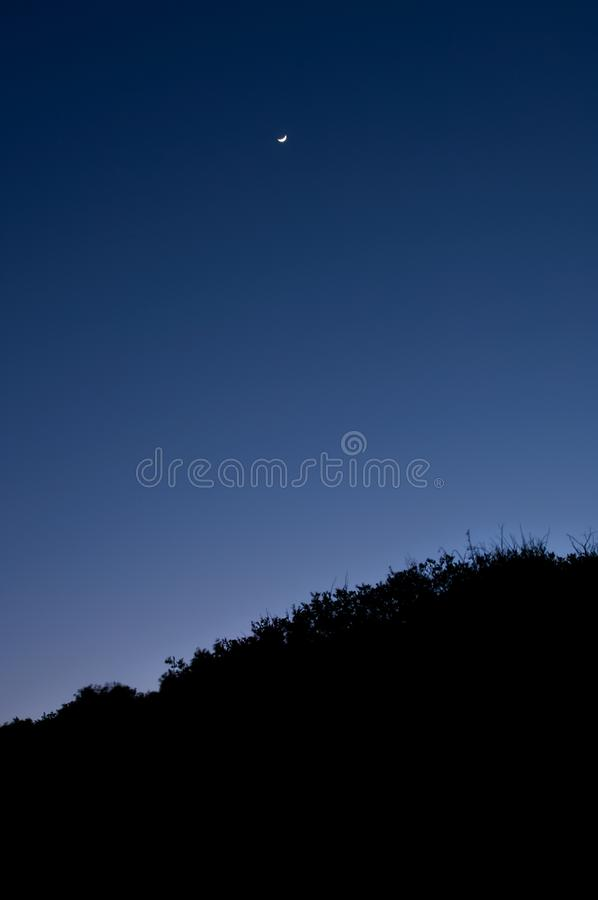 A crescent moon rises about silhouetted trees. A crescent moon hangs in a cobalt blue sky above silhouetted trees on Cumberland Island, Georgia royalty free stock images