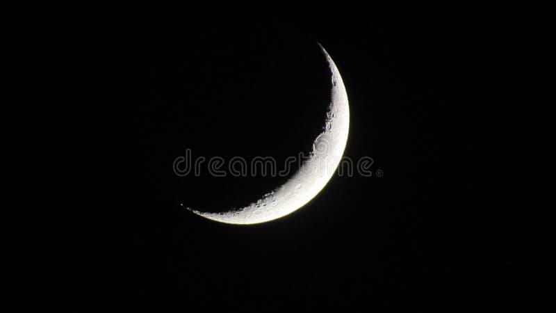 Crescent Moon sul nero fotografie stock