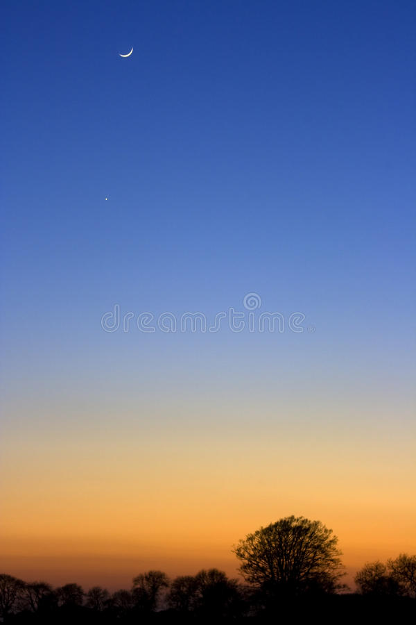 A crescent moon at sunset. Above silhouetted trees royalty free stock images