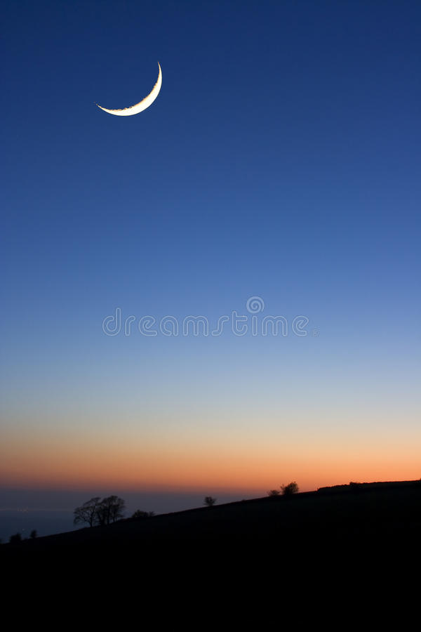 A crescent moon at sunset above. Silhouetted trees stock photography