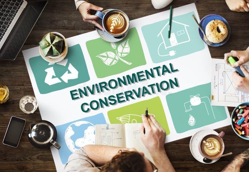 Crescimento ambiental C da proteção da preservação da vida da conservação imagem de stock