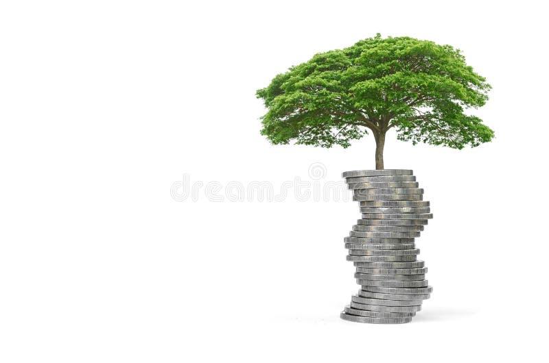 crescimento da árvore do conceito no dinheiro para sua economia fotografia de stock