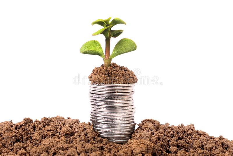 Crescimento da economia imagem de stock
