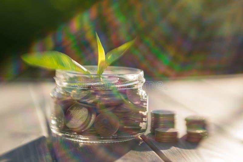 Crescimento da renda e do negócio Frasco de vidro com as moedas nos raios de luz solar fotografia de stock royalty free