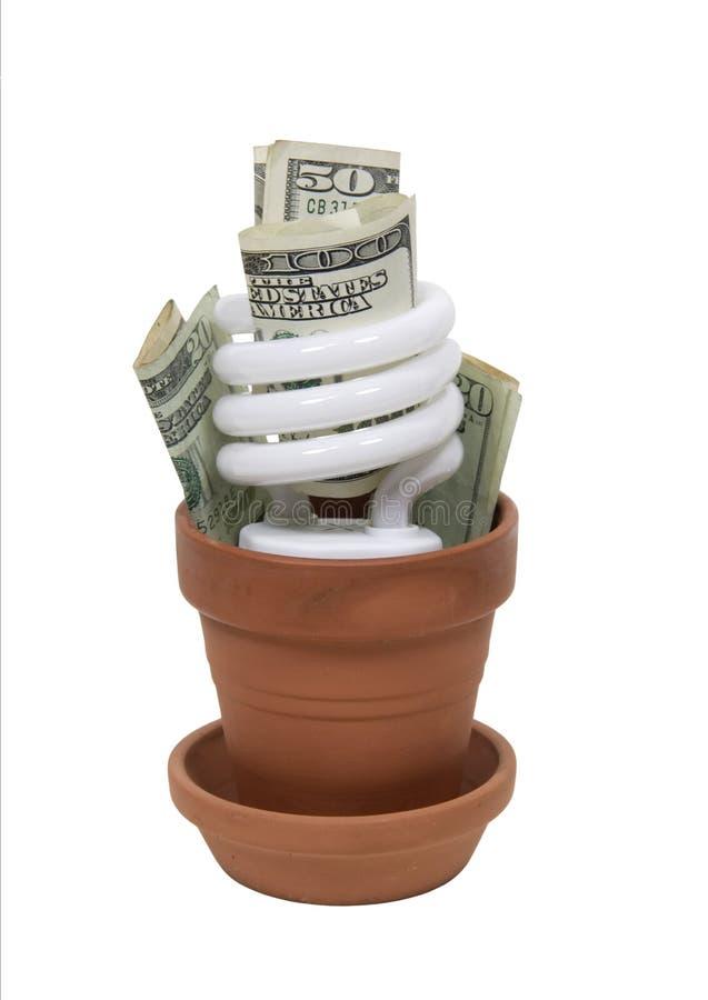 Crescimento verde de maneira rentável foto de stock royalty free