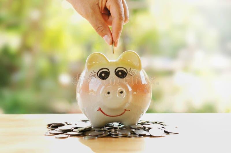 Crescita del porcellino salvadanaio di risparmi della mano e dei soldi della pila immagini stock libere da diritti