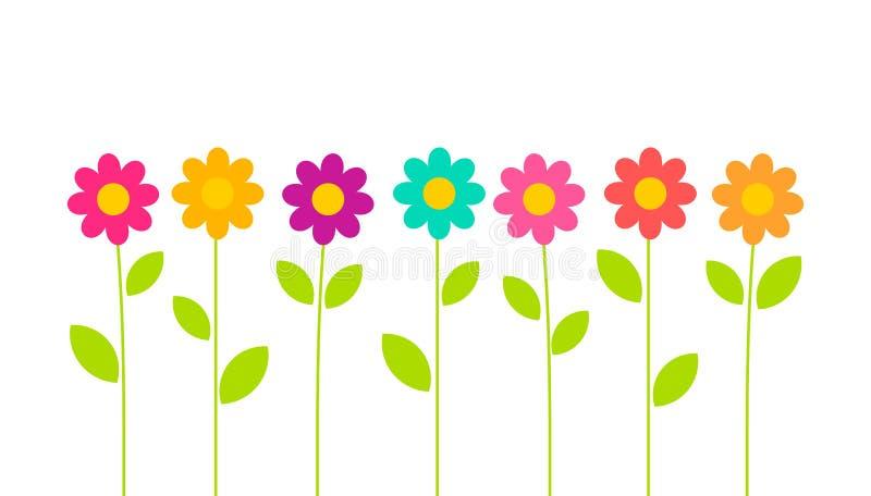 Crescita di fiori variopinta di estate nel giardino su fondo bianco royalty illustrazione gratis