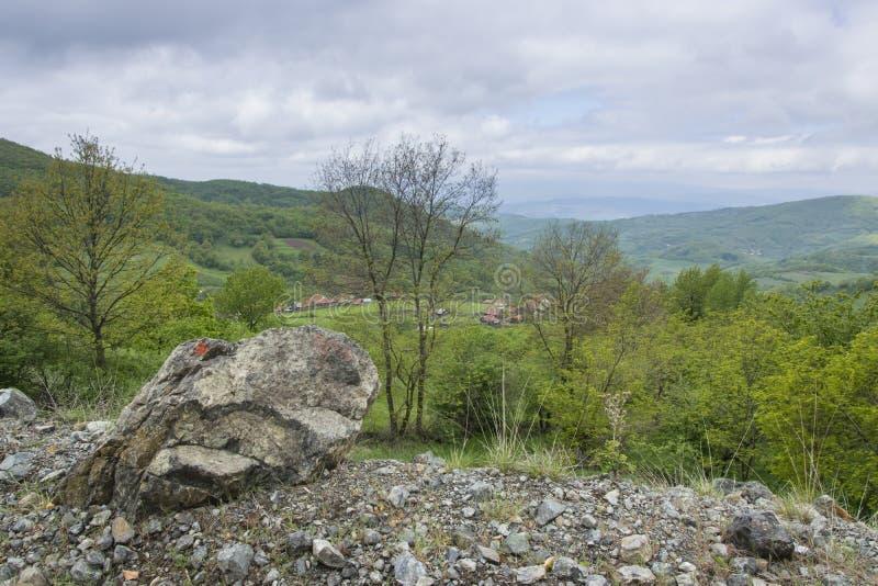 Crescita eccessiva verde della montagna 2 di Kopaonik immagini stock
