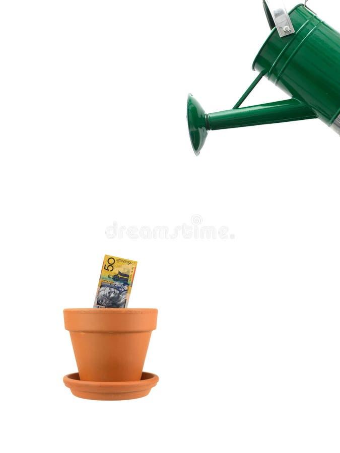 Crescita finanziaria fotografia stock