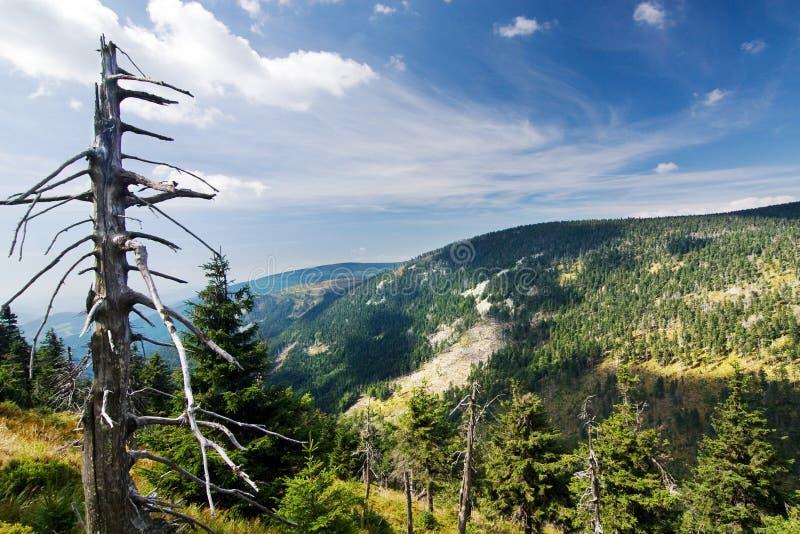 Cresta e cielo blu della montagna di estate fotografia stock libera da diritti