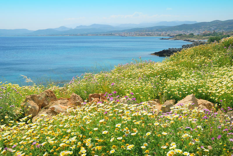 Cretan spring with flowers and blue sea waters. And distant mountains stock photos