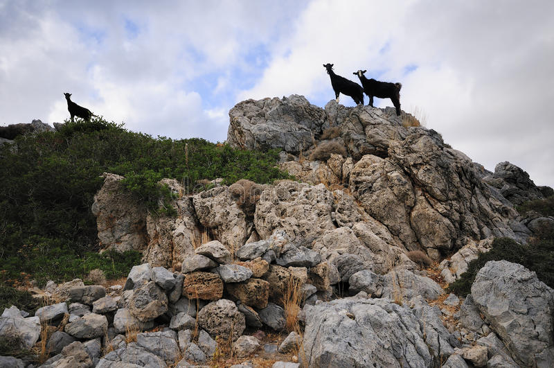 Crete foto de archivo