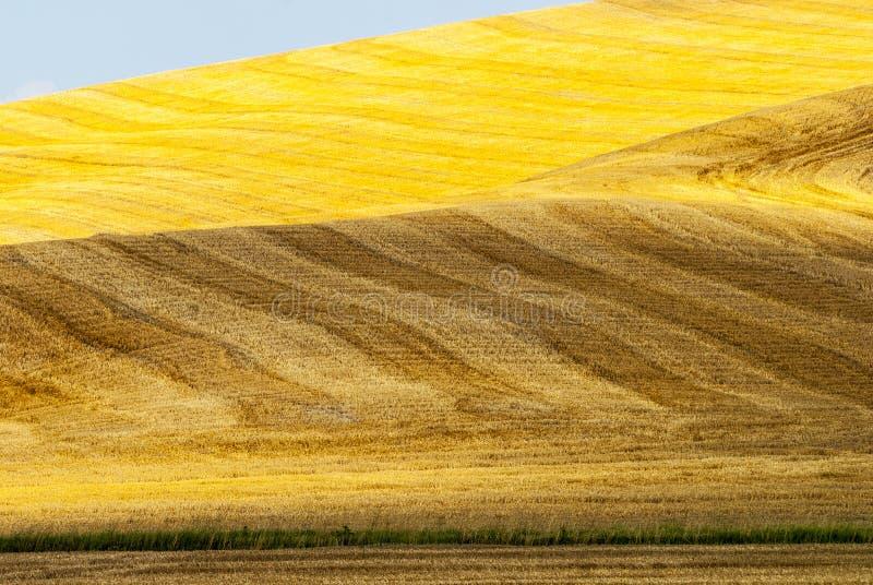 Download Crete Senesi, Characteristic Landscape In Val D'Orcia Stock Image - Image: 30432563