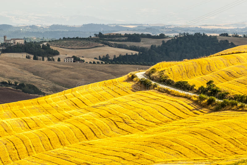 Download Crete Senesi, Characteristic Landscape In Val D'Orcia Stock Image - Image of field, buildings: 30454895