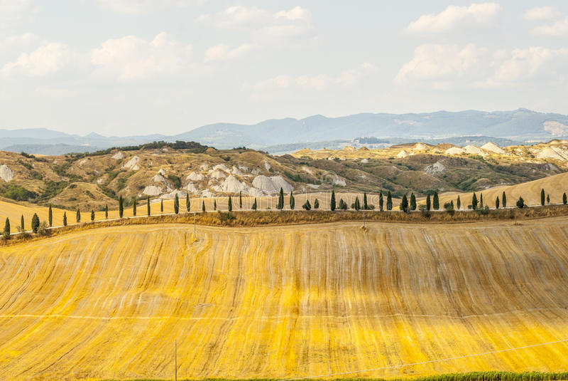 Download Crete Senesi, Characteristic Landscape In Val D'Orcia Stock Image - Image: 30454925