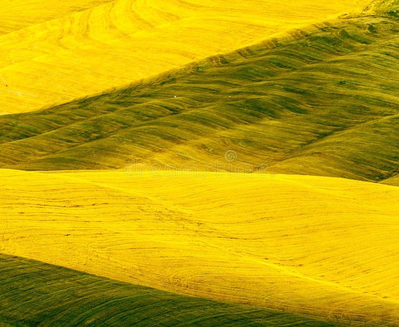 Download Crete Senesi, Characteristic Landscape In Val D'Orcia Stock Photo - Image: 30470002