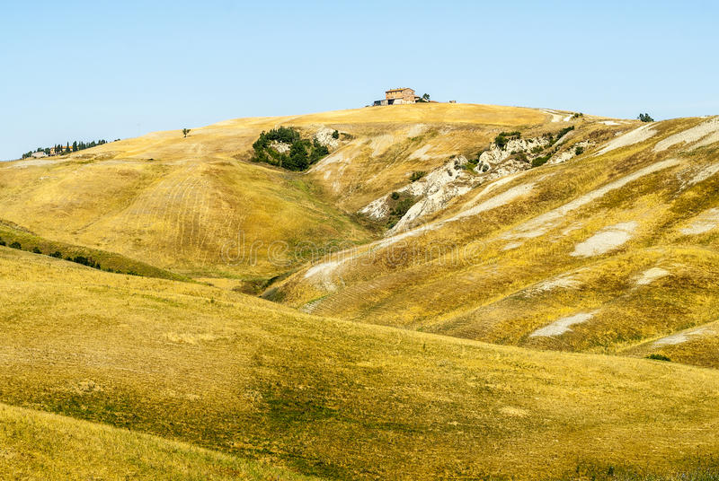 Crete Senesi, Characteristic Landscape In Val D Orcia Royalty Free Stock Images
