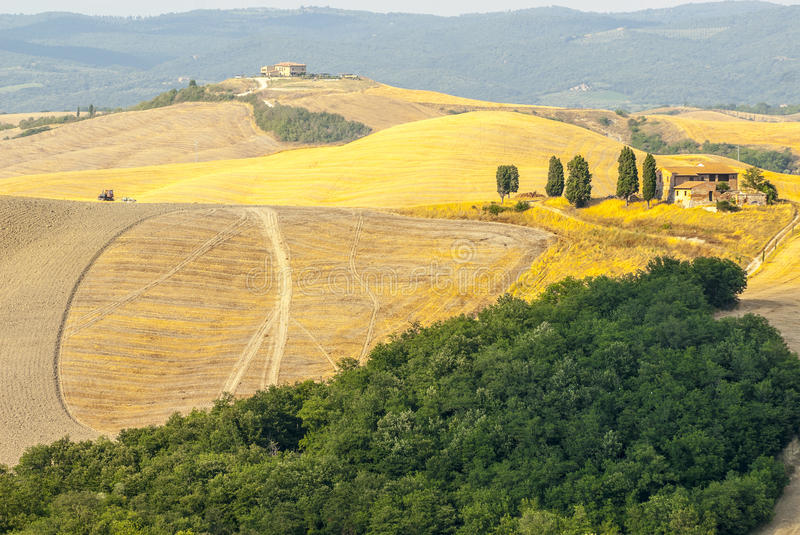 Download Crete Senesi, Characteristic Landscape In Val D'Orcia Stock Image - Image: 30470013