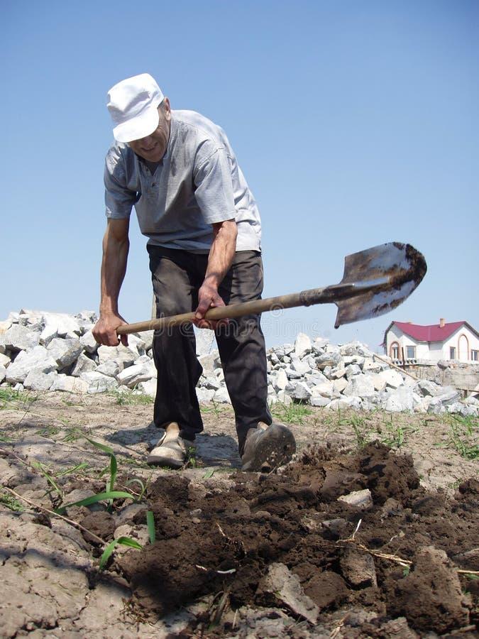 Download Creusement d'homme image stock. Image du potatoes, herbe - 733123