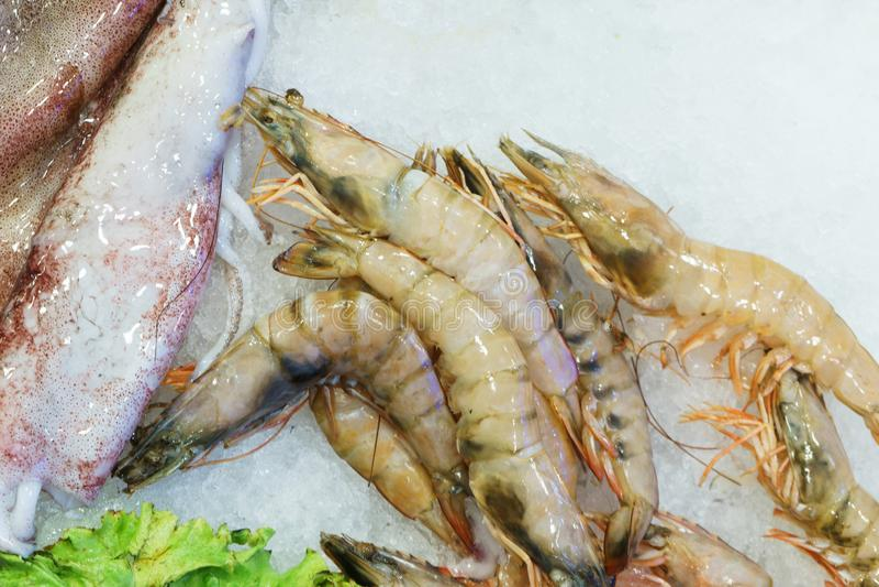 Crevette et poulpe effrayants frais de fruits de mer sur la glace au compteur de poissonnerie photo libre de droits