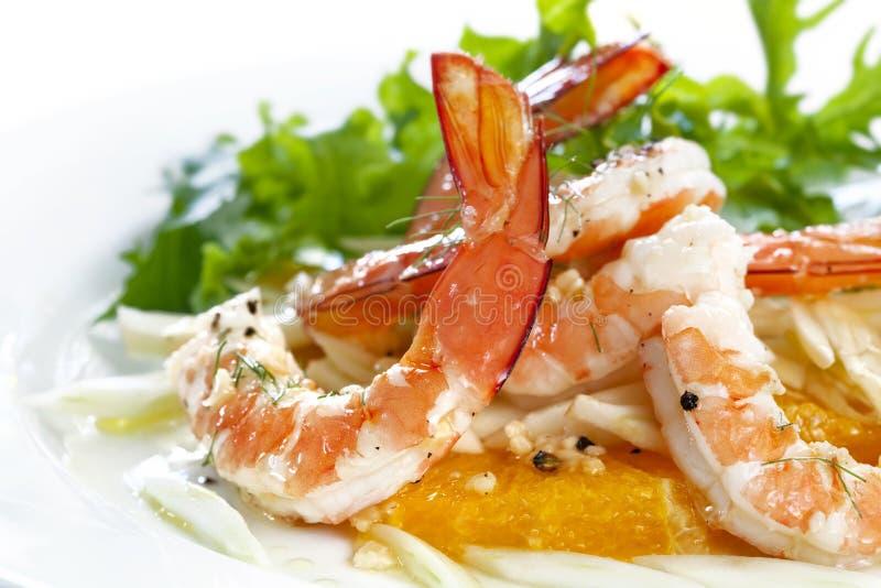 Crevette rose, fenouil et salade orange images stock