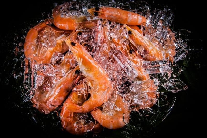 Crevette surgelée avec des glaçons sur un fond noir images libres de droits