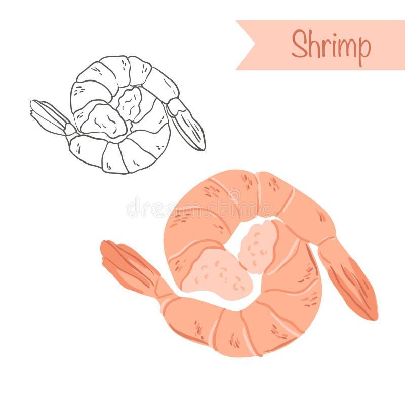crevettes illustration stock
