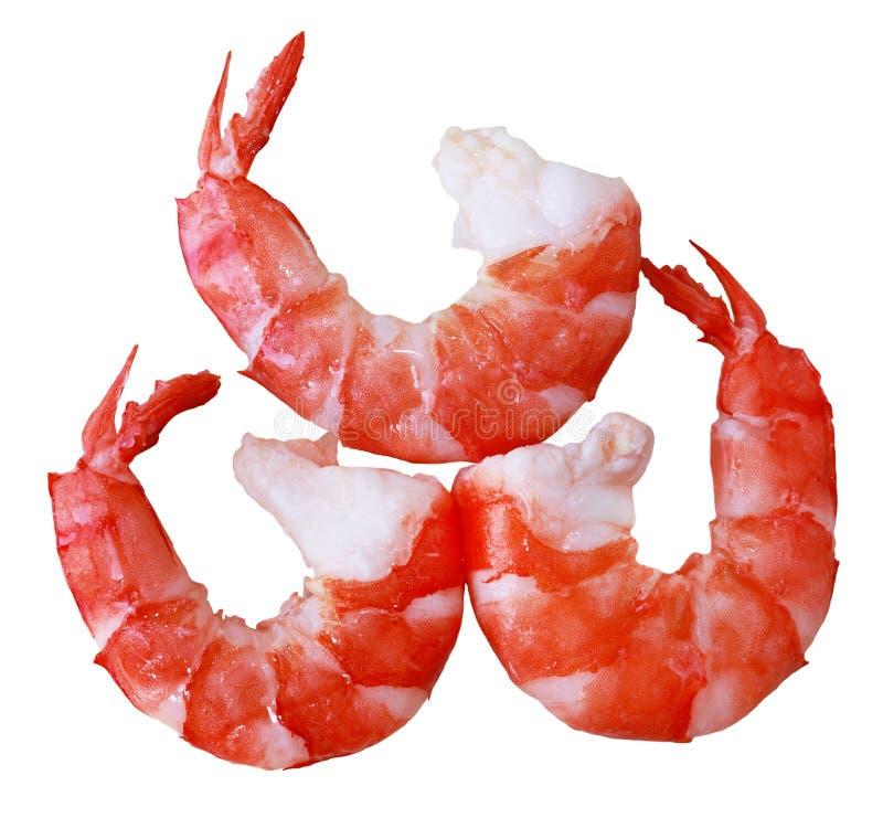 Crevettes cuites de tigre photos stock