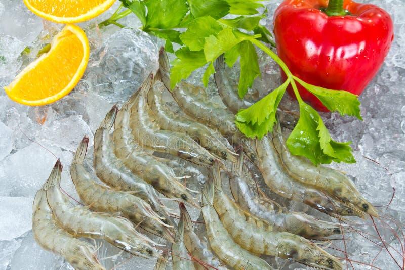 Crevettes et légumes blancs frais images libres de droits