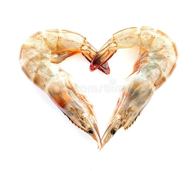 Crevettes roses fraîches de crevettes dans la forme du coeur d'isolement sur le blackground blanc image libre de droits