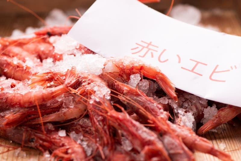Crevettes roses rouges de la mer Méditerranée photographie stock libre de droits