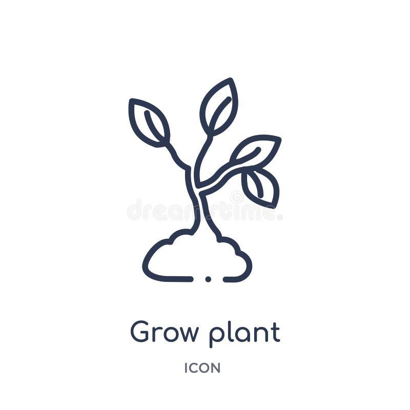 Crezca el icono de la planta de la colección del esquema de la naturaleza La línea fina crece el icono de la planta aislado en el ilustración del vector