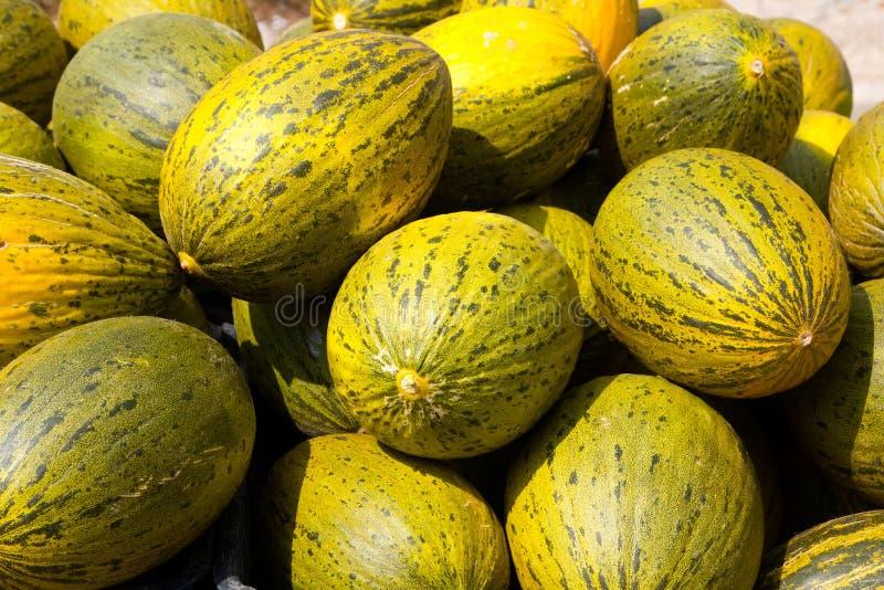 crhistmas melone oder weihnachtsmann piel de sapo stockfoto bild von feinschmecker gesund. Black Bedroom Furniture Sets. Home Design Ideas